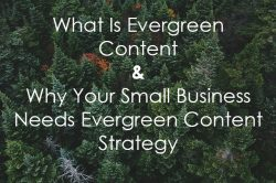 evergreen content for small business