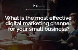 best marketing poll