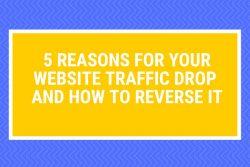 reasons website traffic drop