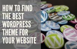 how to find perfect WordPress theme