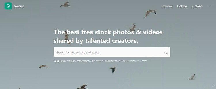 Best Free Stock Photo Sites With High-Quality Images For Personal and Commercial Use 1