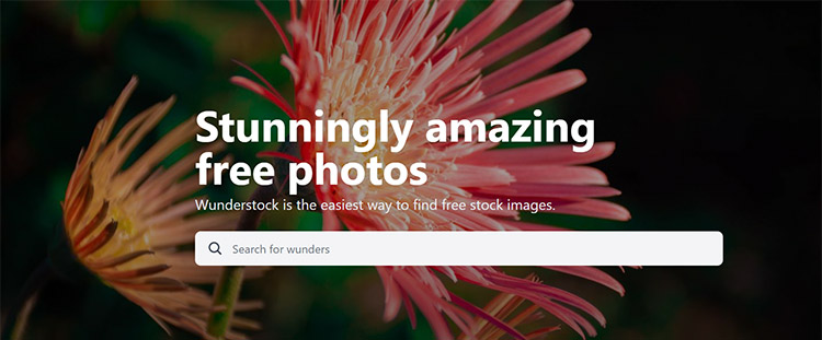 Best Free Stock Photo Sites With High-Quality Images For Personal and Commercial Use 6